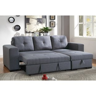Sectional With Pull Out Bed | Wayfair
