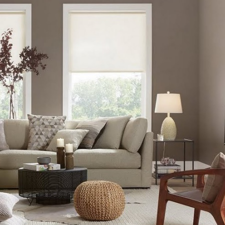 Living Room Paint Colors - The Home Dep